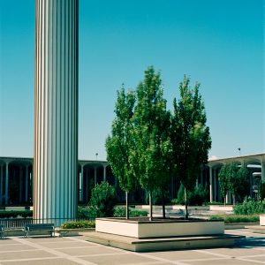State University of New York Albany Campus